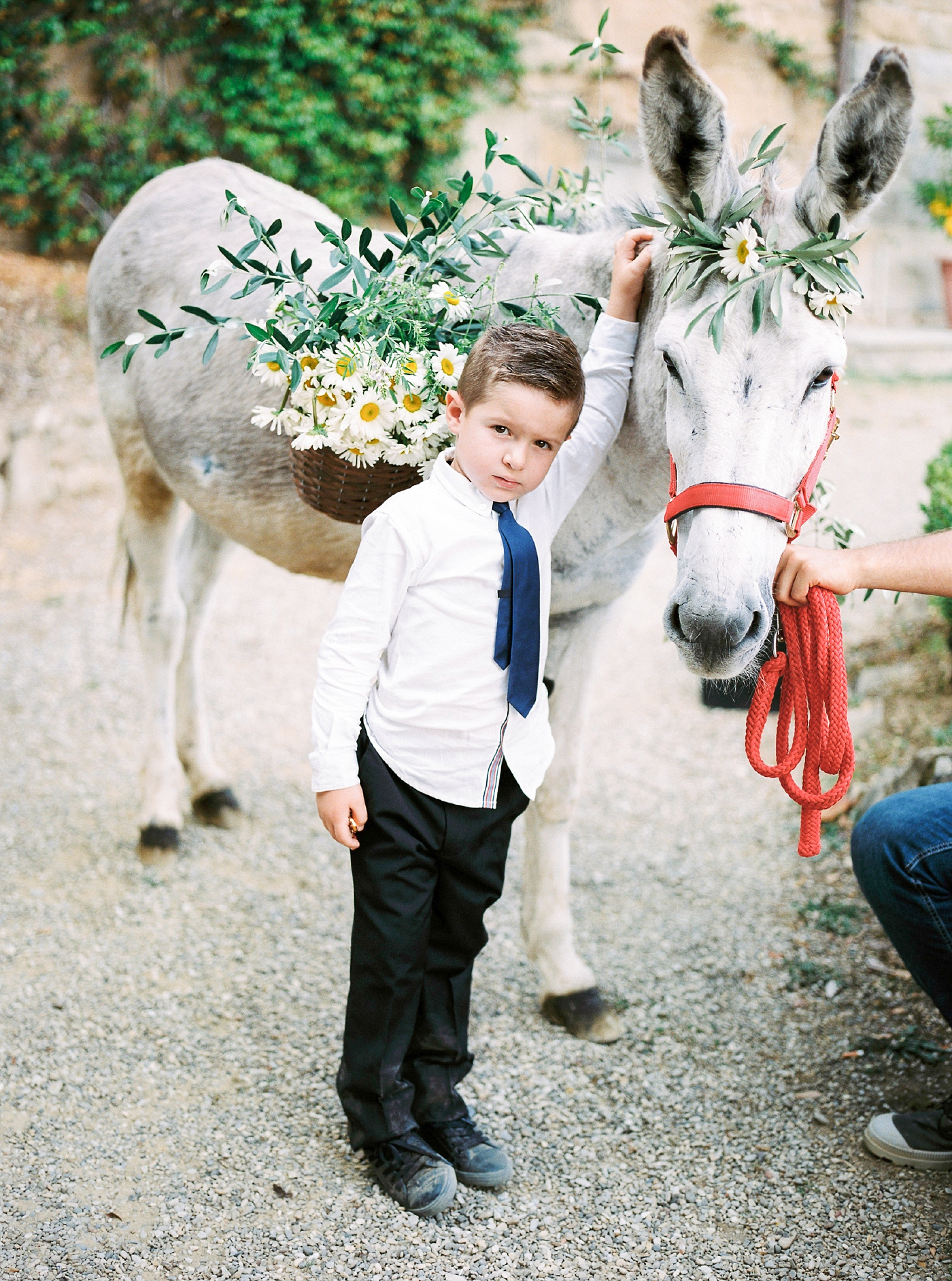 ring-bearer-with-donkey