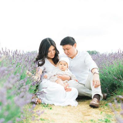 Lavender Fields Fine Art Family Shoot