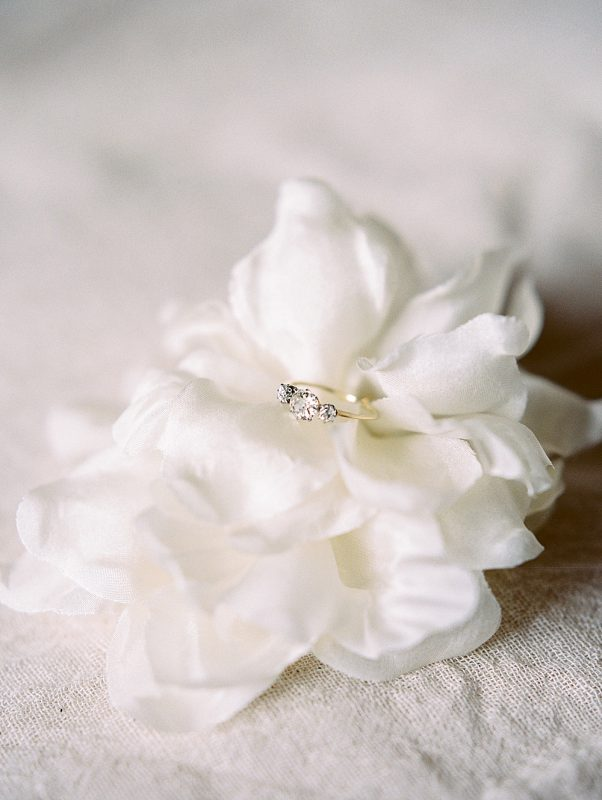 Intimate Central Park wedding engagement ring